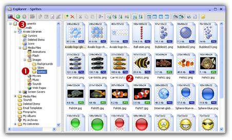 برنامج Professional ScreenSaver Producer القوة التعامل الاحتراف