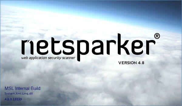 Netsparker Professional Edition 4.8.0.13139