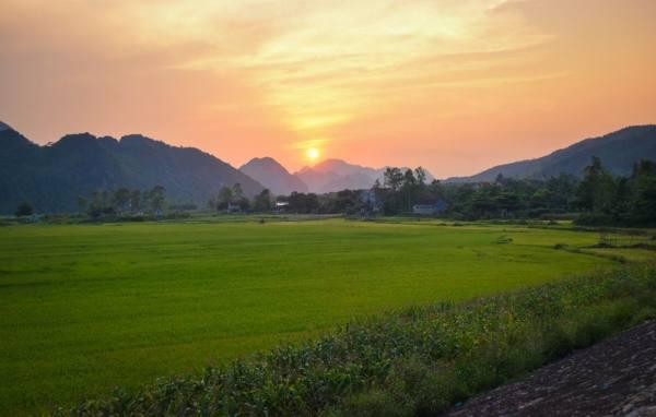 الطبيعة الساحرة فيتنام
